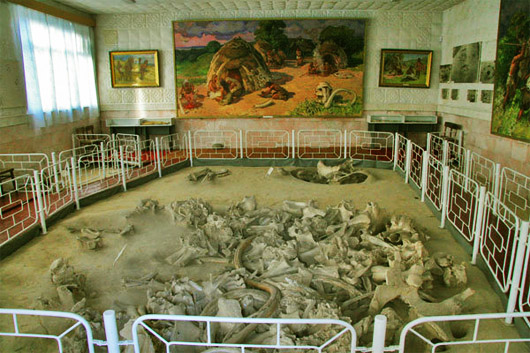 Добраничевская стоянка. В музее