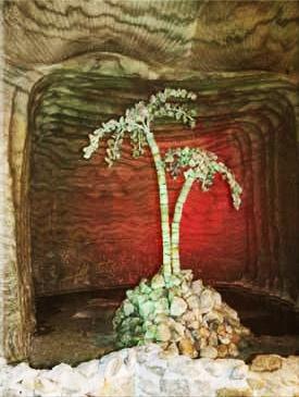 аналог пальмы «Мерцалова»
