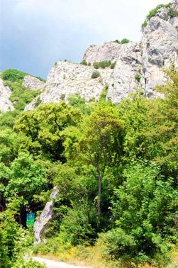 Начало тропы к Шайтан-Мердвен или Чертовой лестнице