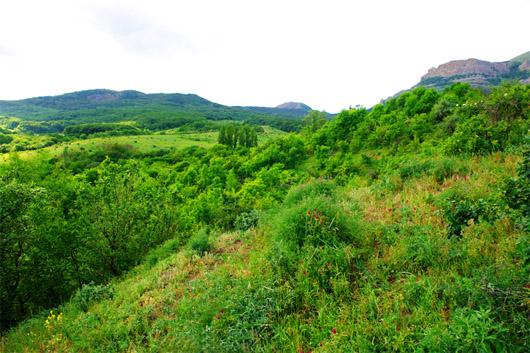 урочище Демерджи. Южные склоны горы Демерджи