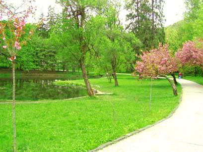 Парк в замке Шенборна