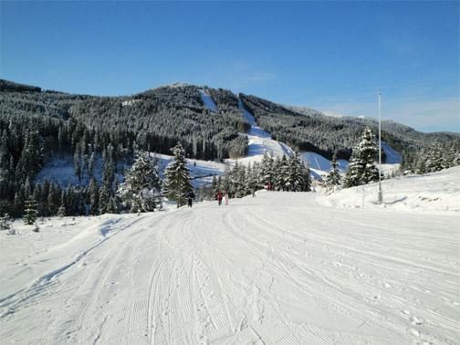 Трасса для горнолыжников