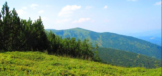 Горы вокруг Трускавца