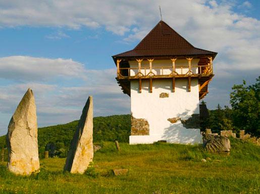 Башня замка 17 века в селе Буша