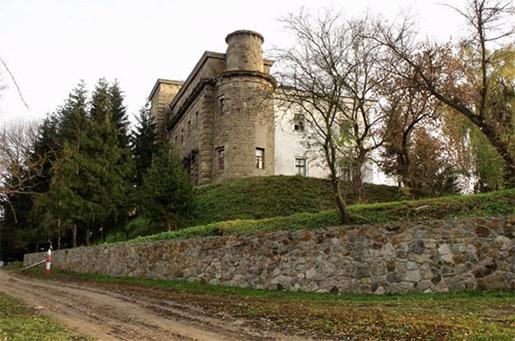 Дворец графа Ксидо, Хмельник