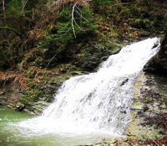 Ландшафтный заказник Буковинские водопады